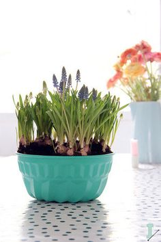 DIY: turn an old cake pan into a flower pot by IDA interior lifestyle