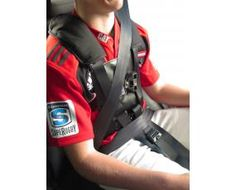 crelling harnesses car seats pinterest. Black Bedroom Furniture Sets. Home Design Ideas