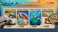 ST16410a Turtles (Aldabrachelys gigantean; Eretmochelys imbricate; Caretta caretta; Gopherus agassizii)