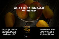 Color Not An Indicator of Ripeness The Selection, Organic, Fruit, Storage, Green, Color, Purse Storage, Larger, Colour