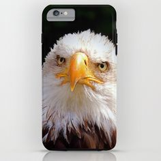 MM – YOU GOT THE LOOK iPhone & iPod Case bird, raptor, bald eagle, bird of prey, white, brown, pride, eyes, nib, beak, bill, face, portrait, nature, animal, fauna, green