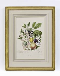 Attention to detail makes our fine framing stand above the rest, with framing to suit every type of art and decorating style. Old Maps, Antique Maps, Antique Prints, Types Of Art, Custom Framing, Decor Styles, Rest, Invitations, Fine Art