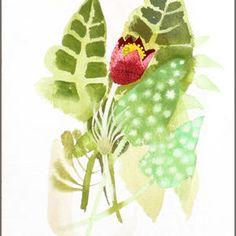 Bonhams 1793 : Mary Fedden R.A. (British, born 1915) 'Pulsa tilla'