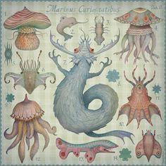 Marine Curiosities by V L A D I M I R