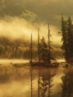 Nisga'a Lava Bed Memorial Provincial Park, Lava Lake in Autumn Mist, Nass River Valley, British Columbia