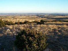 Plateau du larzac parc naturel regional des grands causses guide du tourisme de l aveyron midi pyrenees
