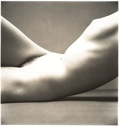 Irving Penn :: Nude No. 40, 1949-50 / src: MetMuseum more [+] by this photographer