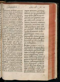 Historia general de las cosas de Nueva España por el fray Bernardino de Sahagún: el Códice Florentino. Libro VII: el Sol, la Luna y las estr...