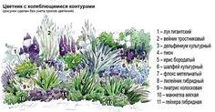 цветники из многолетников своими руками схемы: 16 тыс изображений найдено в Яндекс.Картинках