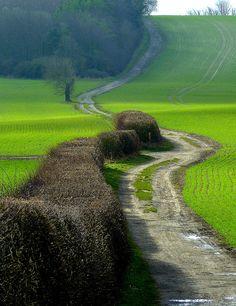 Hertfordshire Countryside... peaceful... #englishcountryside #lifeafterlondon