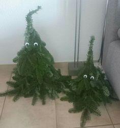 Trees, Christmas, Weihnachten, Baum selbst binden, Tannenzweige
