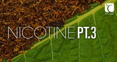 What Does Nicotine Do to the Body and Brain?
