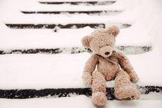 love teddys