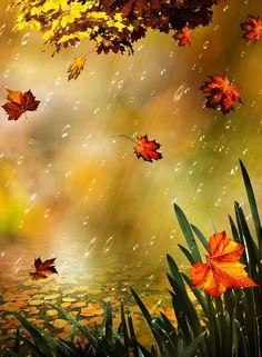 Autumn Rain, Autumn Leaves, Fall Canvas Painting, Iphone Wallpaper Fall, Rain Art, Autumn Illustration, Autumn Scenes, Borders And Frames, Flower Wallpaper
