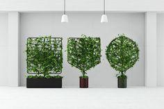 indoor-outdoor planter screens by helen kontouris