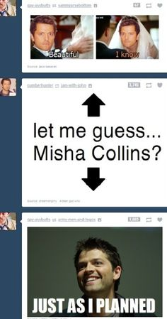 Misha ... misha everywhere