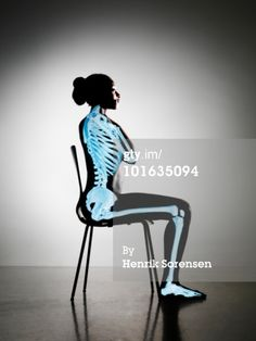 Skeleton Side View Sitting | ... -Res Stock Photography: Up right sitting female with skeleton visible