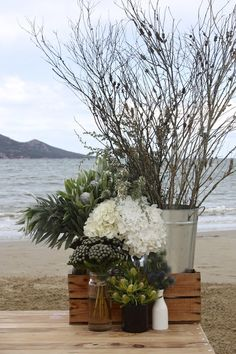 Growing and arranging beautiful Australian Native Flowers and all things Proteaceae. Hydrangea Paniculata, Boutonniere, February Wedding, Swallows, Nest, Bridal, Floral, Plants, Drink Table