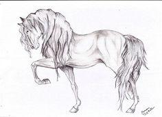 Horseee