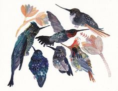 Hummingbirds. Print of Watercolour.