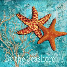 By The Sea Shore Original Colorful Starfish Painting By Megan Duncanson.