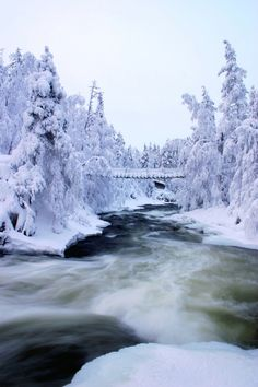 Myllykoski falls in Kitka river during winter, Kuusamo, Finnish Lapland