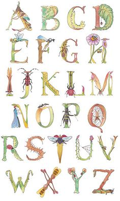 Insect Alphabet by Helen Nehill