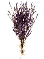 Lavender Bouquet FBQ132.jpg