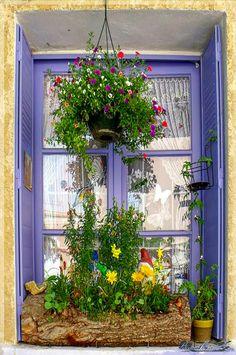 ventana lila con flores en tronco