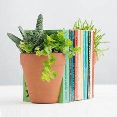 21 Products That Will Trick Your Colleagues Into Thinking You're Organised Plastic Planter, Planter Pots, Precious Book, Terracotta Plant Pots, Flower Pots, Flowers, New Home Gifts, L Shape, Potted Plants
