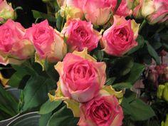 flowers at granville market