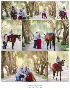 Somis engagement session with horse and dogs at whitethorn ranch by Chelsea Elizabeth Photography. More wedding images at http://chelseaelizabeth.com