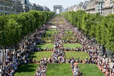 During the weekend of May Nature Capitale, part of International Biodiversity Day, installed 8000 planted plots on the Champs Elysées, a celebration of nature and biodiversity. Paris Lights, City Lights, Paris Garden, Garden Posts, Construction, Paris City, Garden Shop, Champs Elysees, City Maps