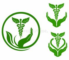 Illustration of clinic - 23845332 Herbal medicine stock vector. Illustration of clinic - 23845332 Health Symbol, Health Logo, Health Facts, Health Quotes, Yoga Positionen, Health Cleanse, Women's Health, Mental Health, Health Care