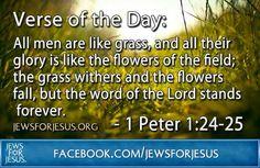 Eternal word