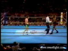 Julio Cesar Chavez vs Roger Mayweather