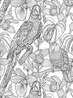 #ClippedOnIssuu from Kreativ fargelegging: 100 mønstre av planter og dyr