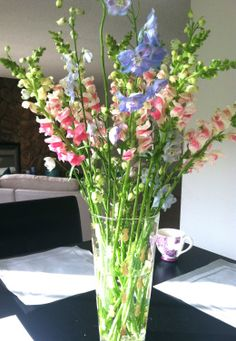 snapdragons and delphiniums