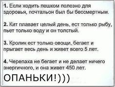 (2) Одноклассники Laws Of Life, Funny Phrases, Stupid Memes, Best Memes, Wise Words, First Love, Haha, Funny Pictures, Jokes