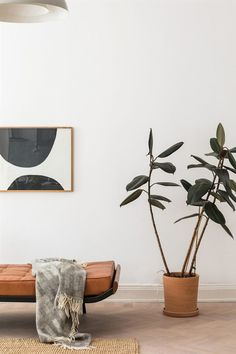 T.D.C: Homes to Inspire   Space, Simplicity + Charm