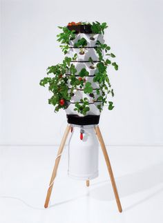 Fogponic unit by Vakant Design, grows veggies indoors & in style.