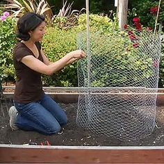 How to Make a Compost Bin with Chicken Wire