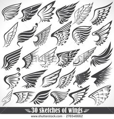 Illustration of The Vector image of Big Set sketches of wings vector art, clipart and stock vectors. Tattoo Drawings, Body Art Tattoos, Small Tattoos, Art Drawings, Wings Sketch, Wings Drawing, Wing Tattoo Designs, Wings Design, Vector Art