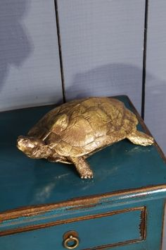 Keep your trinkets safe with this adorable Small Golden Turtle from Sue Parkinson Home Collection. The beautiful turtle comes in a distressed gold Small Turtles, Home Collections, Decorative Objects, Dark, Vintage, Products, Vintage Comics, Gadget