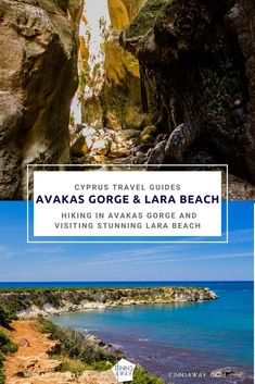 Cyprus travel guides: stunning Paphos district and Akamas. Hiking in Avakas Gorge and enjoying the quietness of remote, turtle-nesting Lara Beach. Travel Around The World, Around The Worlds, Paphos, Cyprus, Hiking Trails, Travel Guides, Turtle, Travel Destinations, Places To Visit