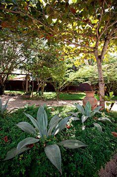 paisagismo-empresaria-Karin-Farah-jardim-agaves-grama-amendoim-vaso-amendoeira…