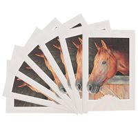 Straight from the Horse's Mouth - Box of 16 Cards at The Animal Rescue Site (and many others). BONUS! 20% of every purchase will be donated to help support the Humane Society of the United States!