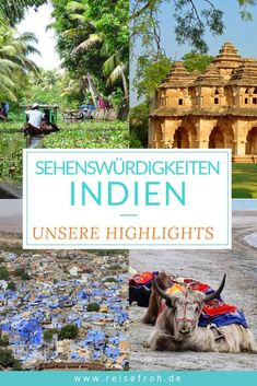 Indien Sehenswürdigkeiten: Top Highlights in Nord & Süd Discover the beauty of the Indian subcontinent: Here are our top 21 sights in India. Our highlight in North & South India as well as many travel tips. Travel Around The World, Around The Worlds, Taj Mahal, India Travel, Travel Europe, Reisen In Europa, North South, South India, Travel Tips