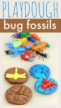 bug fossils playdough