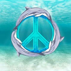 Dolphins For Peace....